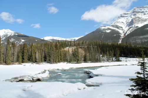 RoadTrip Alberta rockies 3