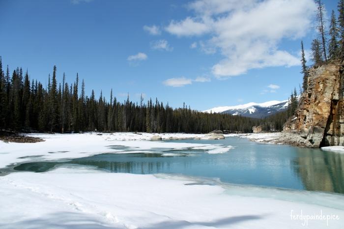 RoadTrip Alberta rockies 5