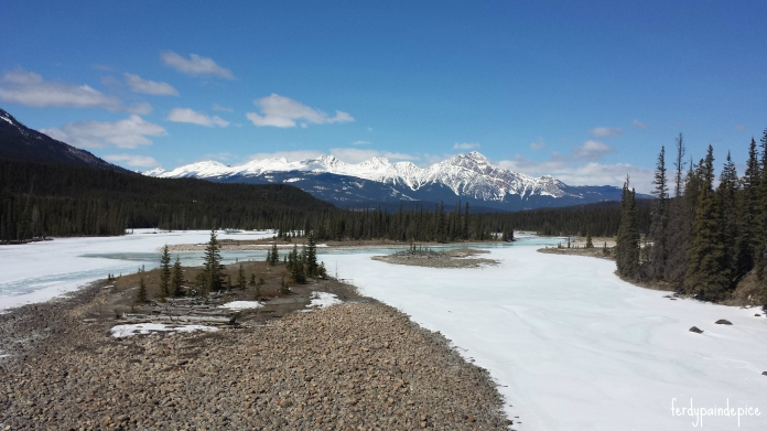 RoadTrip Alberta rockies 6