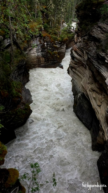 Athabasca Falls 8