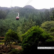 grouse mountain1