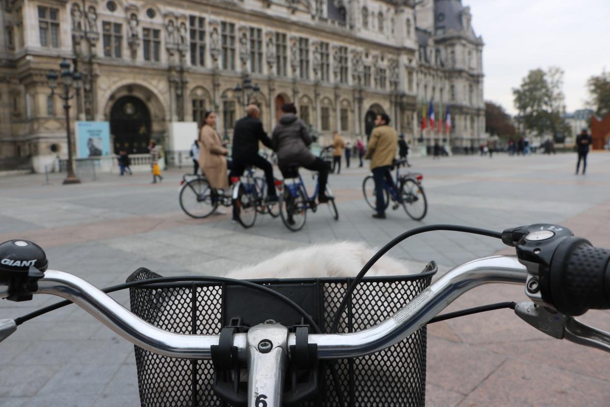 Paris à vélo c'est quelque chose !