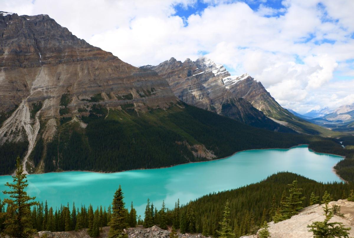 Peyto Lake : Une merveille des Rocheuses à ne pas manquer !