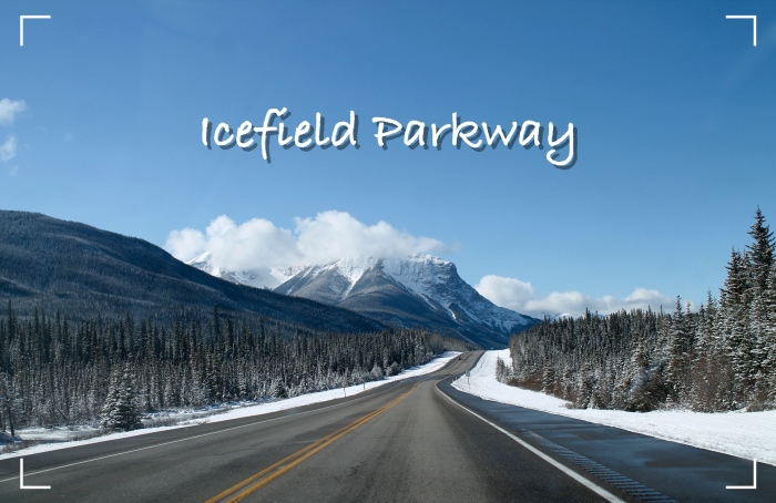 icefield-parkway