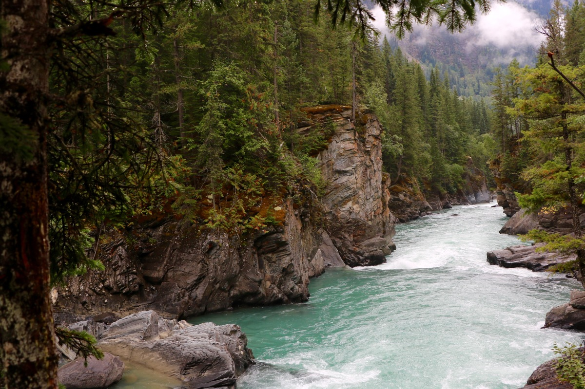 Overlander Falls Trail in Mount Robson Park, BC